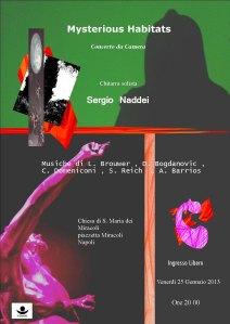 Locandina concerto Naddei 25 gennaio